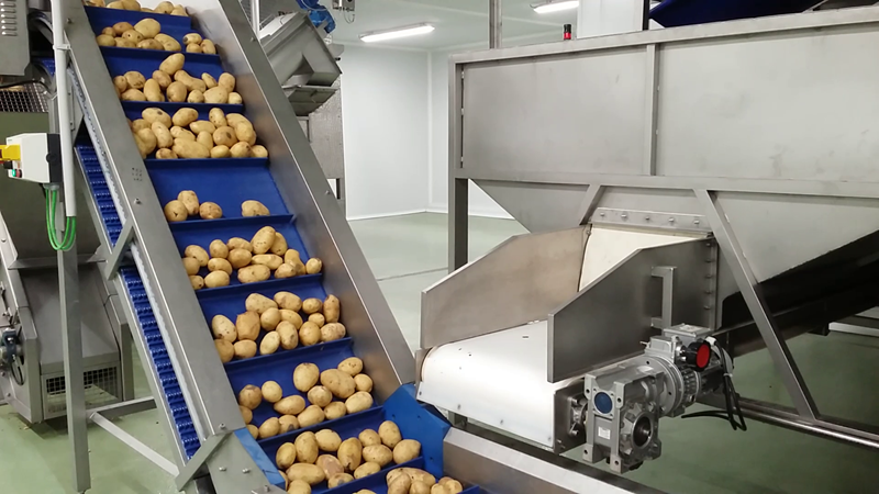 Paturpat, a company specialised in processing and marketing steamed potatoes, has opted for TOMRA's Orbit steam peeler, because of the advantages it offers during the peeling process and to the final result.