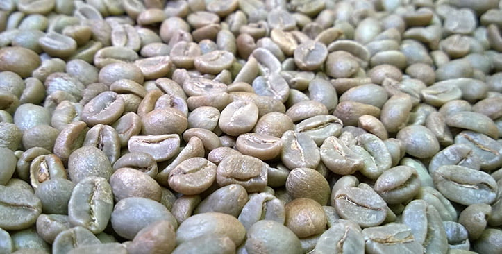 Sorting green coffee beans with TOMRA's sorting equipment