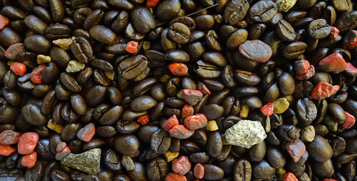 Sorting foreign material in roasted coffee beans